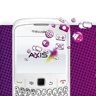 blackberry-axis.JPG